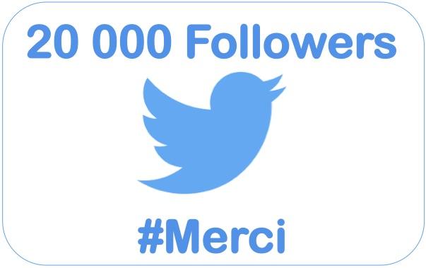 20000-followers-twitter-sebastien-bourguignon