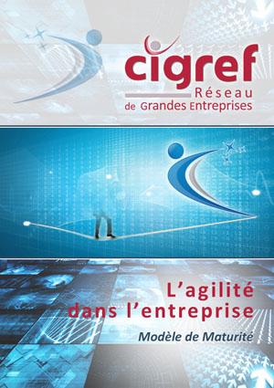 CIGREF-agilite-dans-lentreprise-2015